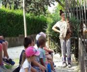 parco-zoo-falconara_falconeria