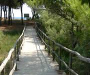 parco_naturale_rimigliano_percorso_carrozzinabile