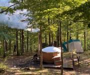orme_nel_parco-sauna-nel-bosco