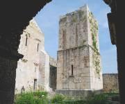 abbazia-del-goleto-torre