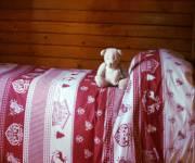 casa_scoiattolo_grigio_bimbi