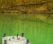parco-matildico-montalto_lago