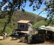 fattoria_didattica-_la_collina-_degli_asinelli_struttura