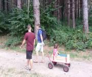 parco-cinque-sensi-vitorchiano-carrettino-nel-bosco