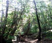 parco-cinque-sensi-vitorchiano-escursione-boschi