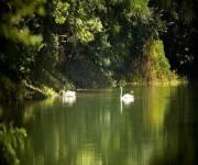 parco_didattico_della_preistoria_lago