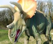 parco_le_pietre_del_drago_triceratopo