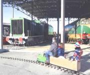 museo-ferroviario-piemontese-savigliano-trenino
