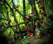 parco_bosco_delle_meraviglie_piccole_case