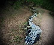 parco_bosco_delle_meraviglie_scheletro