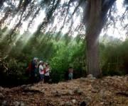 parco_naturale_bosco_delle_pianelle_meraviglie