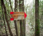 parco_naturale_bosco_delle_pianelle_sentieri