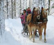 hotel_piz_galin_slitta-cavalli