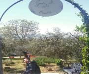 agriturismo-villa-rosy-giardino-delle-erbe-aromatiche