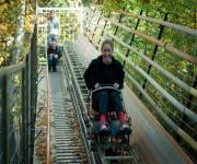 osteria_ai_pioppi_rollercoaster