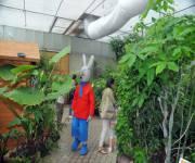 parco_naturale_cervia_casa_delle_farfalle