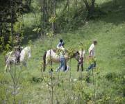 parco_avventura_cingoli_passeggiate_a_cavallo