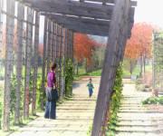venaria-reale-giardini_potager_pasotti_matteo