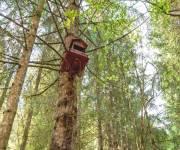 villaggio-degli-gnomi-asiago-sugli-alberi